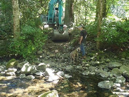 Habitat restoration of Charters Creek
