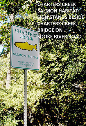 Charters Creek Bridge on Sooke River Road