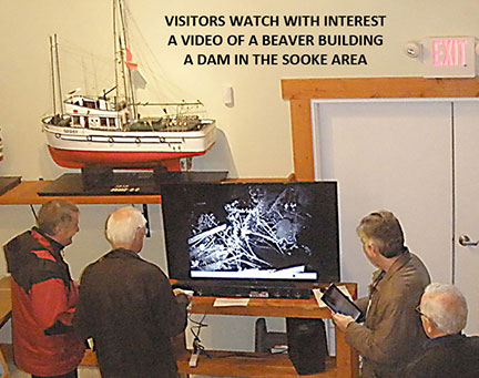 Interpretation and Exhbitions at the Charters River Salmon Interpretive Centre
